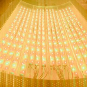 Photobiomodulation Therapy Targeting, Dose & Multiple Wavelengths